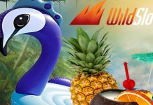Wild Slots Wild Summer Promotion, Three Fun Filled Bonuses
