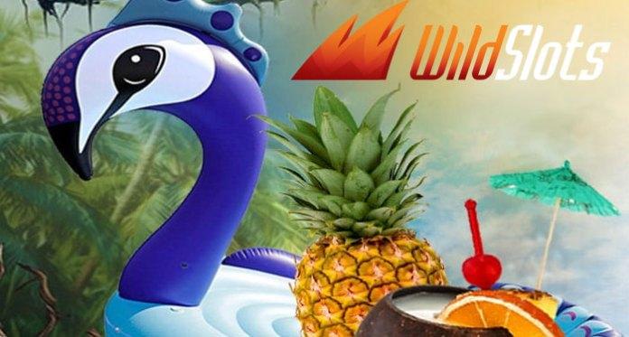 Wild Slots Wild Summer Promotion, Three Fun Filled Bonuses