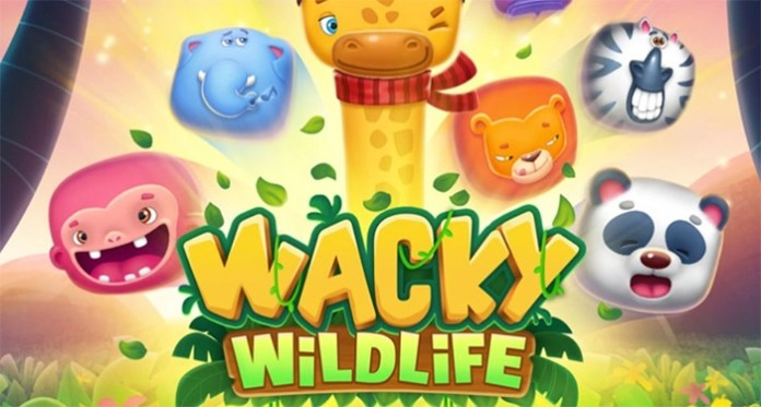 Wacky Wildlife by OneTouch, Preview Their Latest Jungle Themed Slot