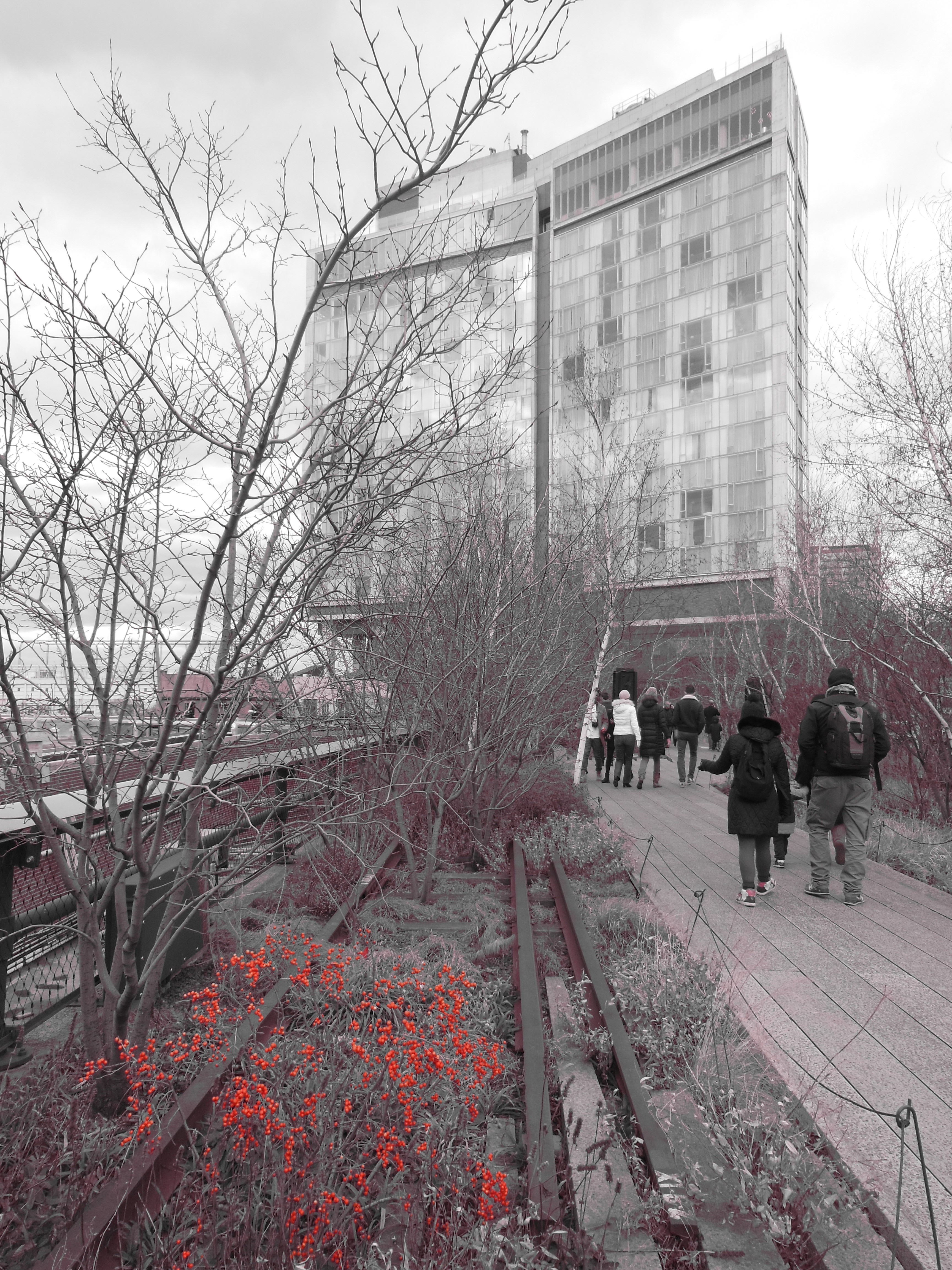 Exploring The Extended High Line Park On Christmas Day