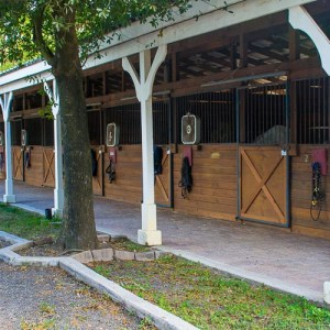 The stable's open and airy stalls