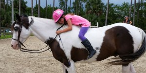 fun bareback days at horse riding lessons