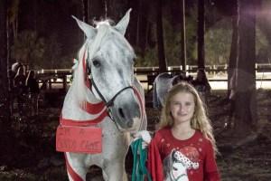 Enchanted Horse Parade