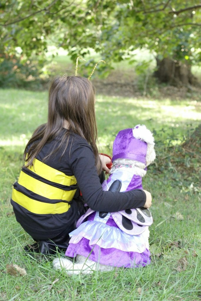 Butterfly and Bee Costume Pair for Kid & Dog