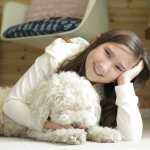 PetProof Bedroom Carpeting from The Home Depot