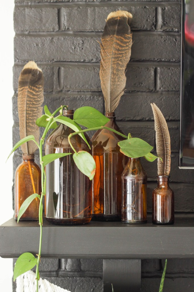 Amber bottles with propagating plants and feathers for fall
