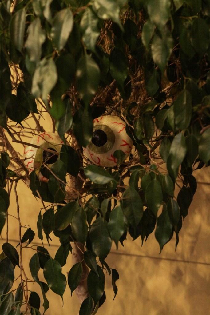 Eyeballs in Tree for Halloween