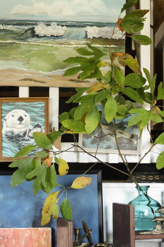 Tree Branches in vase