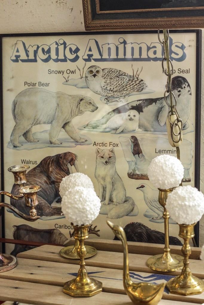 Vintage Arctic animals poster