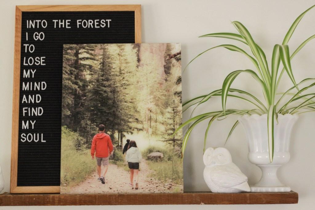 Acrylic Mount Modern Frameless Photo