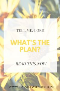 Tell me, Lord, what's the plan? | Cassie L. Wilson - learning to be the light