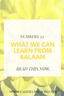 Numbers 22: What we can learn from Balaam | Cassie L. Wilson - learning to be the light