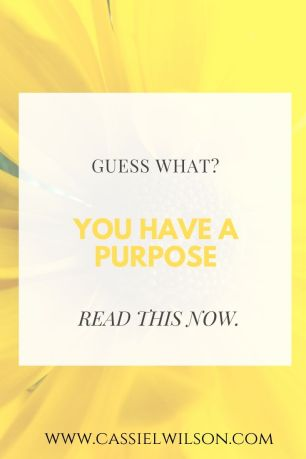 Guess what? You have a purpose. | Cassie L. Wilson - learning to be the light