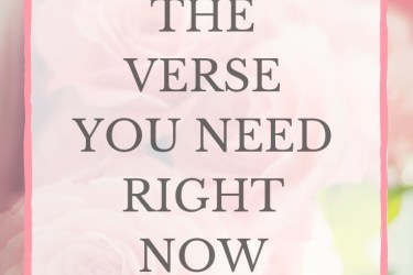 The Verse You Need Right Now