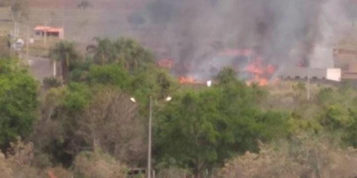 Leitor enviando fotos e informando que está pegando fogo no bairro Mais Parque
