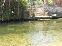 Il Rio Santacroce a Gianola