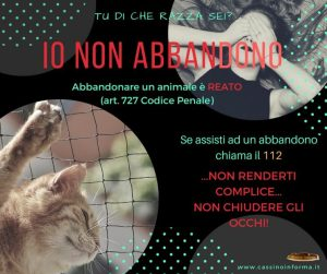 Campagna contro l'abbandono di animali