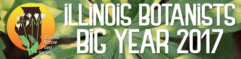 Illinois Botanists Big Year 2017