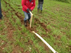 Prove di aratura con aratro tipo Lavagnone (BS) - agricoltura - centro archeologia sperimentale torino