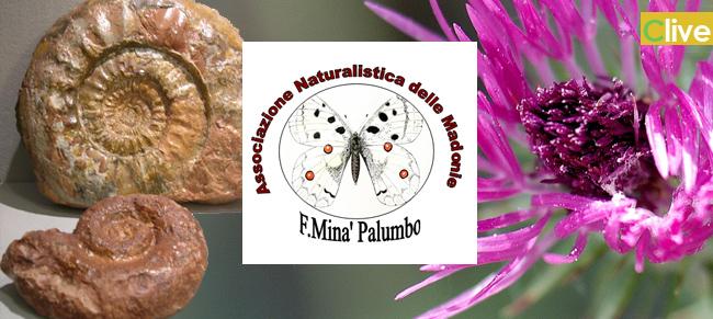 """Associazione Naturalistica delle Madonie """"Francesco Minà Palumbo: avviato un percorso formativo per gli studenti dell' Istituto Comprensivo di Castelbuono"""