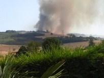 feux forêt 3