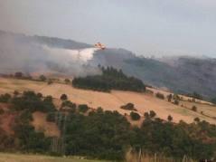 feux forêt