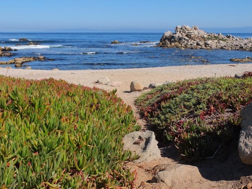 USA Monterey - Pebble beach