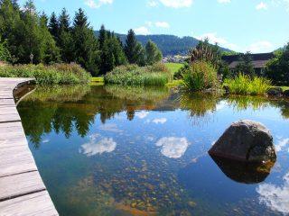 Hotel Bareiss Schwarzwald - extérieur / waldpark