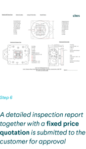Inspection Report with Price provided to marine company