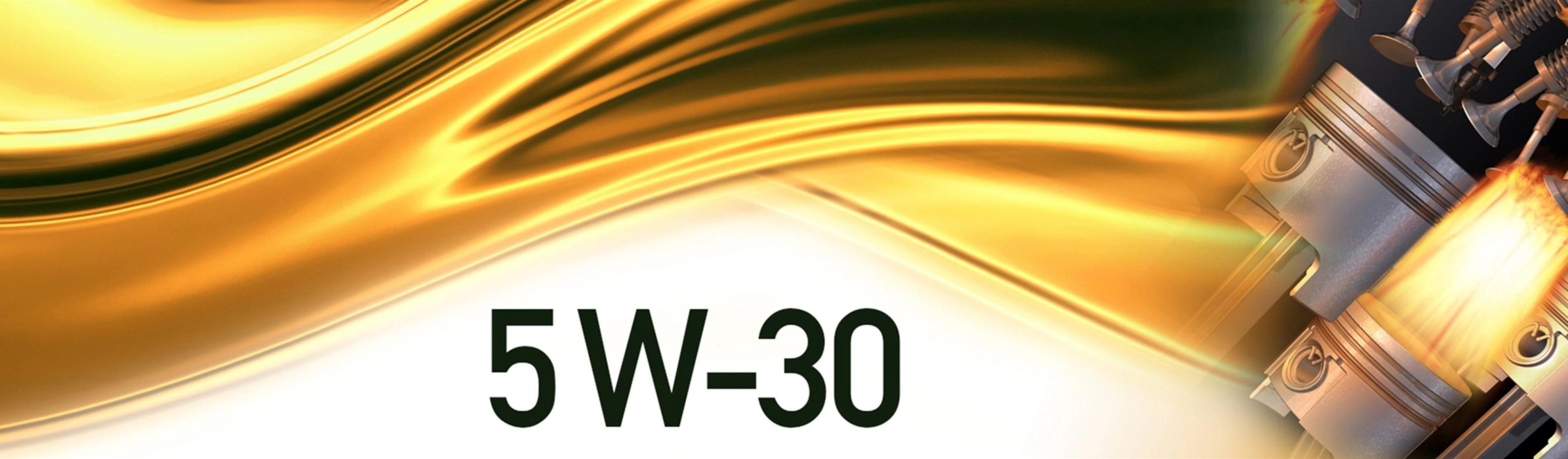 5w 30 Motor Oil Fluids Home