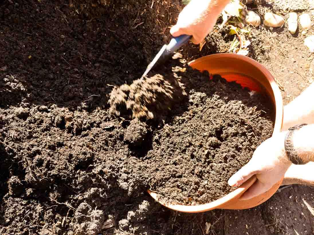 Gemüse selber anbauen - Kompost nach dem Winter