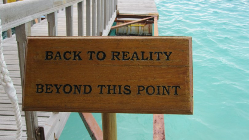 back_to_reality