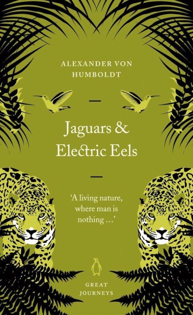 jaguars-eels