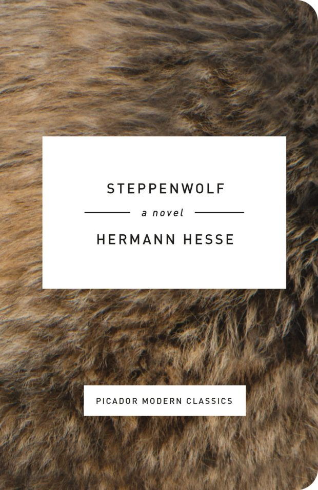 Steppenwolf_rounded