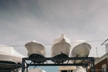 Zeiss Planar 50mm 1.4 c-y mount review-9