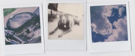 polaroid sx70 Scan 02