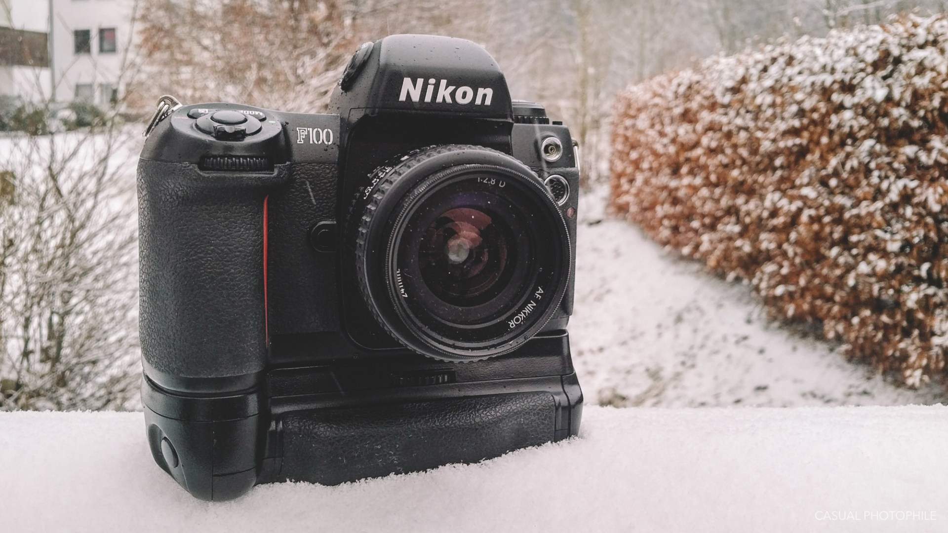 Nikon F100 Review - The Ultimate 35mm Film SLR Value
