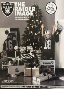 Catalog Consulting: Raider Image
