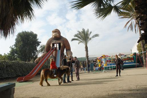 Los domingos y festivos los niños pueden montar en poni