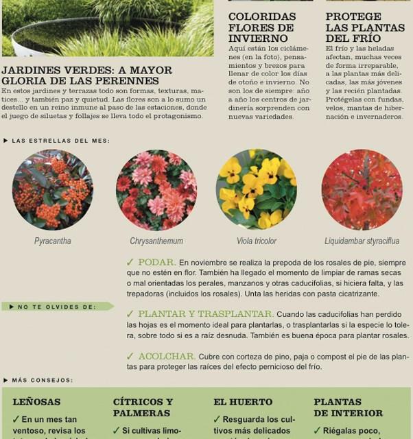 Agenda del Huerto y Jardín para el mes de Noviembre