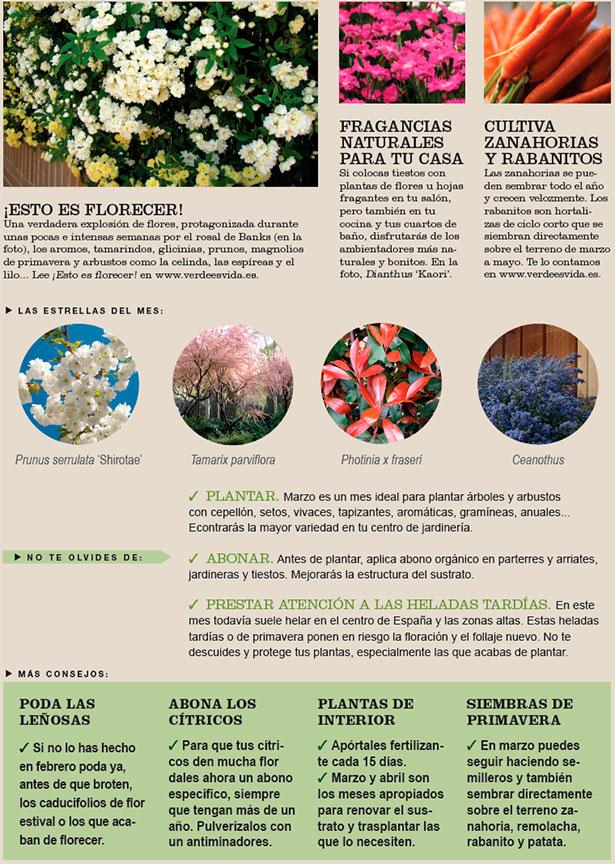 agenda-huerto-jardin-marzo-2015