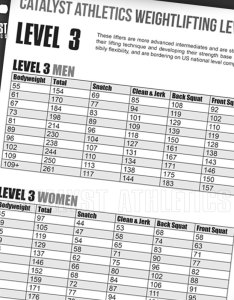 Free snatch learning manual also olympic weightlifting skill levels chart by greg everett rh catalystathletics