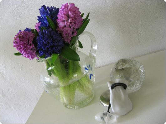 hyacinter1.jpg