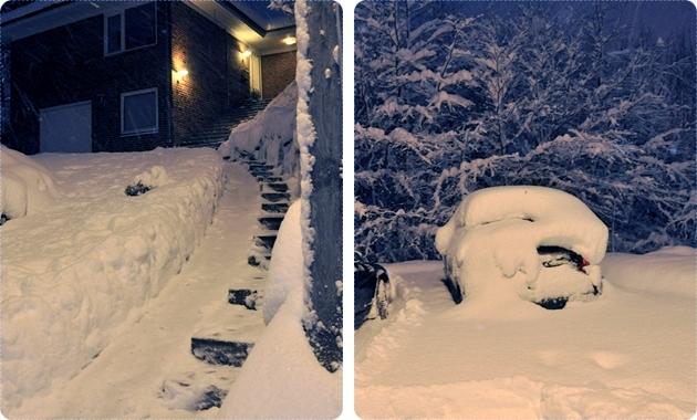 Masser-af-sne