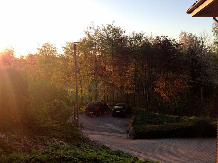 Jeg elsker solskins morgener