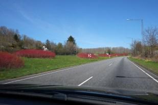 Kristi Himmelfartsferie i Skagen_20160504_006 copy