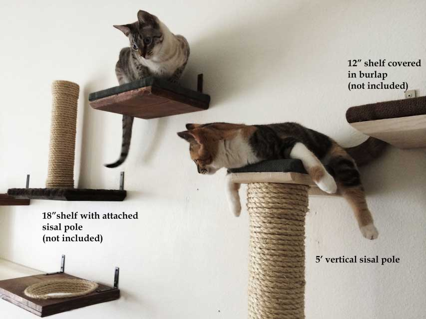 Vertical Wallmounted Sisal Pole  Catastrophic Creations