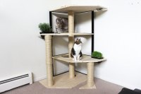 New collection of Cat Trees  Catastrophic Creations