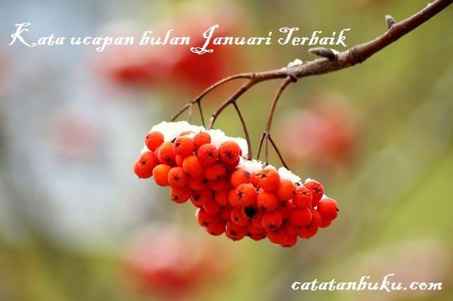 Kata Ucapan Bulan Januari: Kata Bijak, Harapan dan Do'a