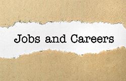 Jobs and careers artwork